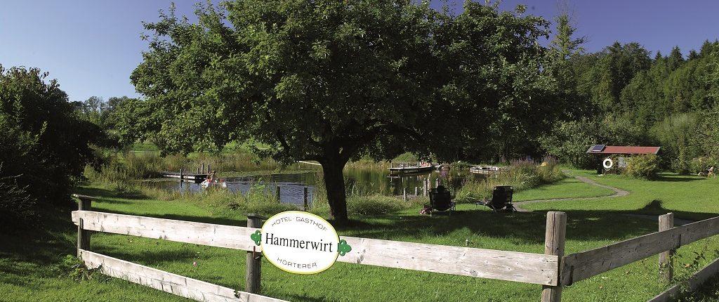 Badesee Hammerwirt Siegsdorf 1