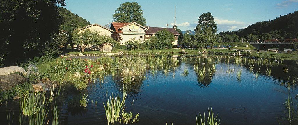 Badesee Hammerwirt Siegsdorf 4